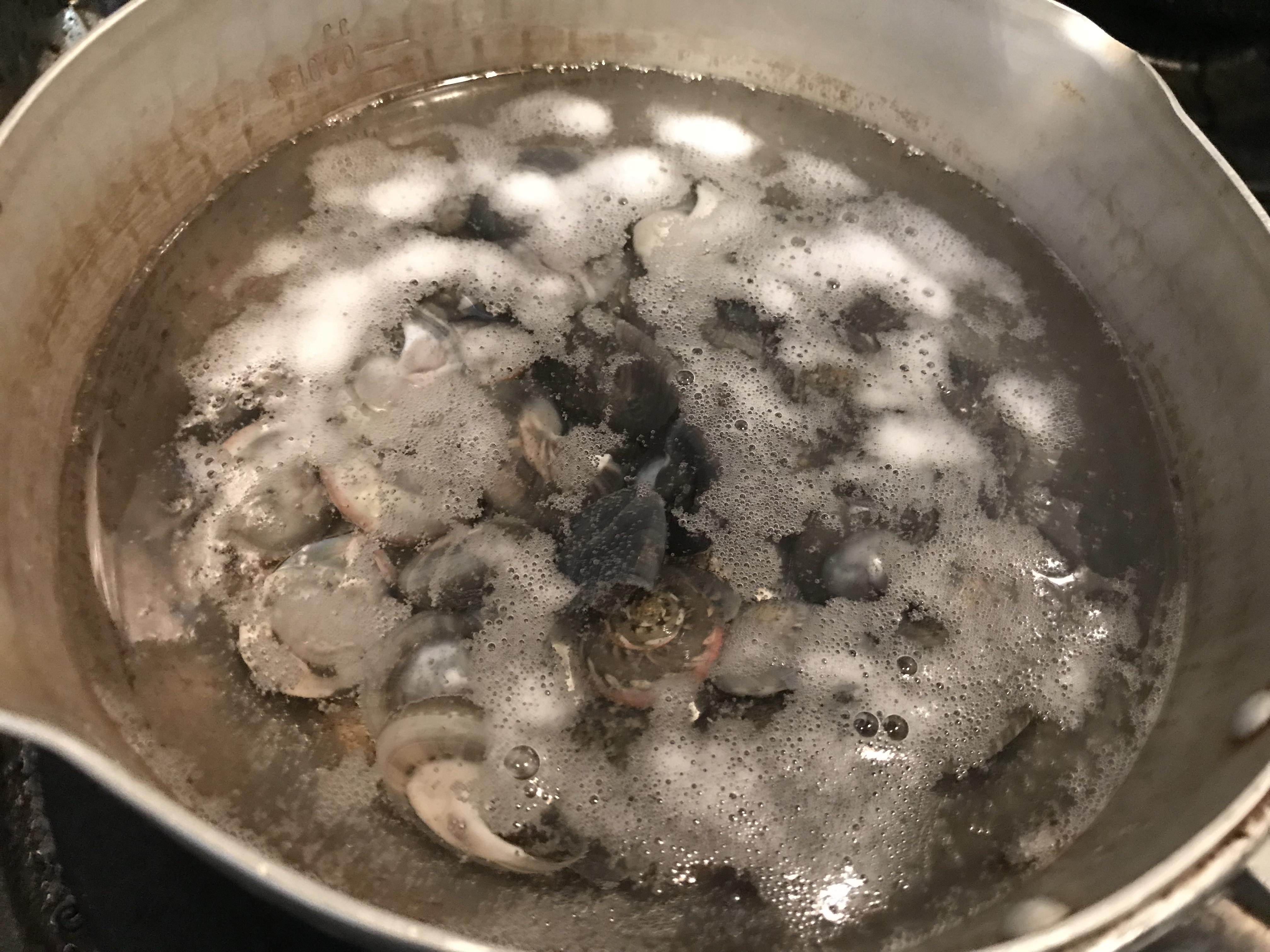 茹で バイ 貝 塩