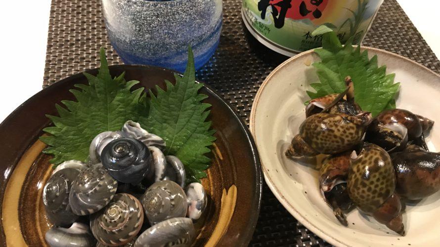 ながらみ塩茹でと黒バイ貝